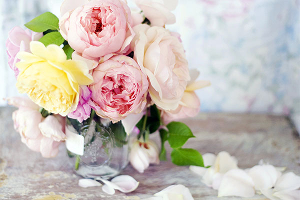 flowers-focus-roses-pink-bokeh-photo-petals-vase-background
